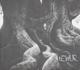 TEITUR-STORY MUSIC