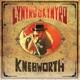LYNYRD SKYNYRD-LIVE AT KNEBWORTH '76 / 2LP+DV...