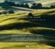 VARIOUS-OZELLA MUSIC THE SOUND
