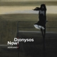 DIONYSOS NOW!-ADRIANO 2