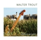 TROUT, WALTER-COMMON GROUND