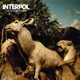 INTERPOL-OUR LOVE TO ADMIRE/ 10TH ANNIVERSERY EDITION -ANNIVERS