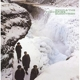 ECHO & THE BUNNYMEN-PORCUPINE -LTD-
