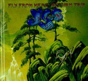 YES-FLY FROM HERE-RETURN TRIP -DIGI-