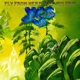 YES-FLY FROM HERE-RETURN TRIP / 180GR. -GATEF...