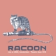 RACOON-LIVE AT HMH AMSTERDAM - THEATRE SHO