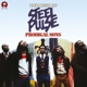 STEEL PULSE-PRODIGAL SONS