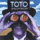 TOTO-MINDFIELDS