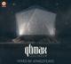 VARIOUS-QLIMAX 2015