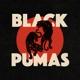 BLACK PUMAS-BLACK PUMAS