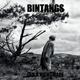 BINTANGS-IT'S A NIGHTMARE
