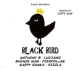 VARIOUS-BIG SLAP & BLACK BIRD RIDDIMS BY CITY...