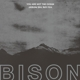 BISON-YOU ARE NOT THE OCEAN YOU ARE THE P