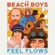 BEACH BOYS-FEEL FLOWS: THE SUNFLOWER & SURF'S UP SESSIONS 69-71