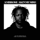 AKINMUSIRE, AMBROSE-ON THE TENDER SPOT OF EVE...
