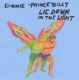 BONNIE PRINCE BILLY-LIE DOWN IN THE LIGHT