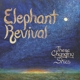 ELEPHANT REVIVAL-THESE CHANGING SKIES