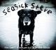 SEASICK STEVE-YOU CANT TEACH AN OLD DOG NEW T...