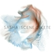SASHA-SCENE DELETE: THE REMIXES / RSD IMPORT ...