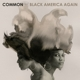 COMMON-BLACK AMERICA AGAIN
