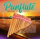 VARIOUS-PANFLUTE WORLD HITS