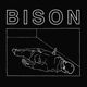 BISON-ONE THOUSAND NEEDLES