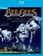 BEE GEES-ONE FOR ALL TOUR -LIVE-