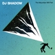 DJ SHADOW-MOUNTAIN WILL FALL