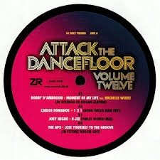 VARIOUS-ATTACK THE DANCEFLOOR 12