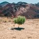 SYML-HURT EP'S