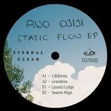 AWO OJIJI-STATIC FLOW EP