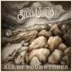 STEEL WOODS-ALL OF YOUR STONES