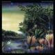 FLEETWOOD MAC-TANGO IN THE NIGHT -REMAST-