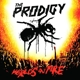 PRODIGY-WORLD'S ON FIRE-ANNIVERS-