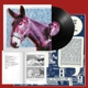 PROTOMARTYR-ULTIMATE SUCCESS TODAY