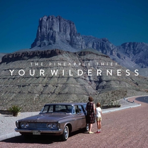 PINEAPPLE THIEF-YOUR WILDERNESS
