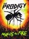 PRODIGY-LIVE - WORLD'S ON FIRE -DVD+CD-