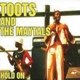 TOOTS & THE MAYTALS-HOLD ON