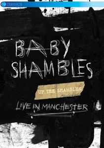 BABYSHAMBLES-UP THE SHAMBLES