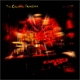 CINEMATIC ORCHESTRA, THE-EVERY DAY