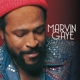 GAYE, MARVIN-COLLECTED -HQ-