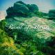 BAND OF HORSES-MIRAGE ROCK