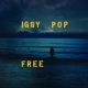 POP, IGGY-FREE