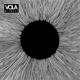 VOLA-WITNESS -DIGI-