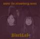 BLACKLAB-UNDER THE STRAWBERRY MOON