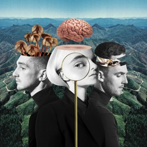 CLEAN BANDIT-WHAT IS LOVE?