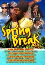 VARIOUS-SPRING BREAK 2013