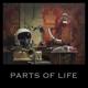 KALKBRENNER, PAUL-PARTS OF LIFE -LP+CD-