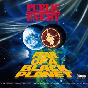 PUBLIC ENEMY-FEAR OF A BLACK PLANET
