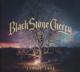 BLACK STONE CHERRY-FAMILY TREE